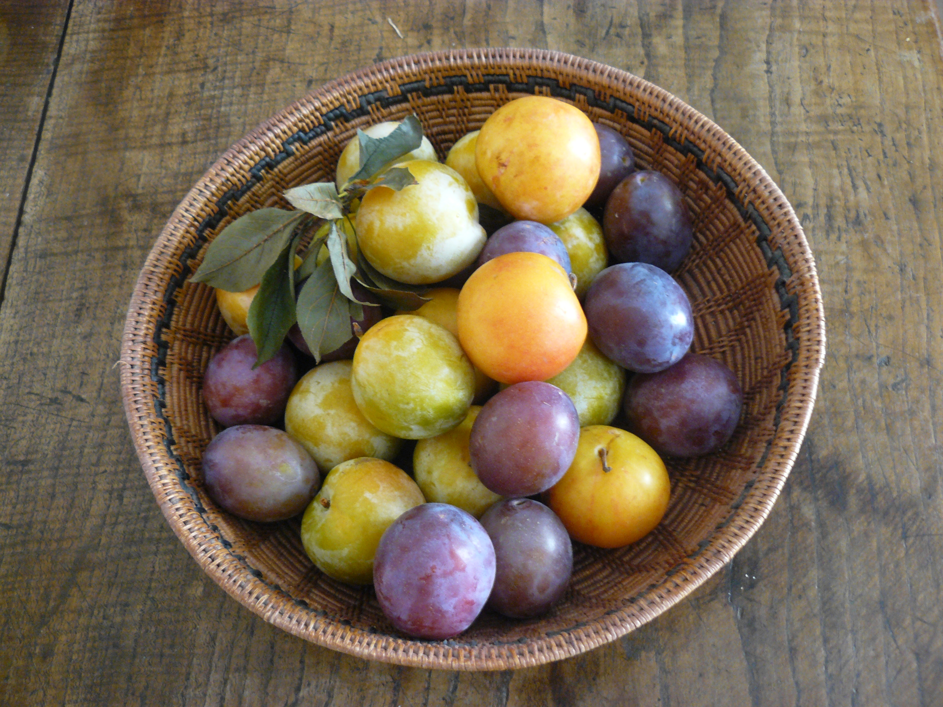 stanley plum recipes