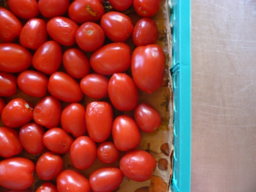 tray of toms